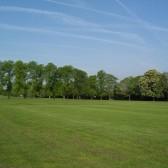 Pages Park